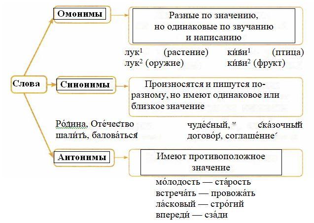 Одинаковы ли модели слов ворона и сорока. Я просмотрела учебник.