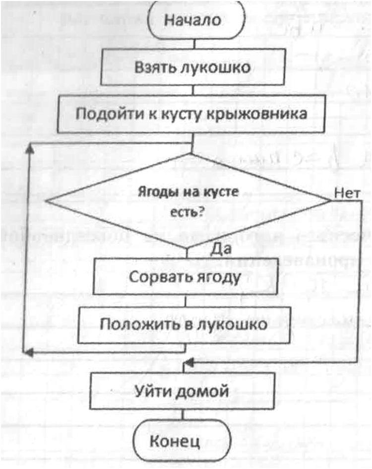 Задания из рабочей тетради по информатике 9 классс тема алгоритмы
