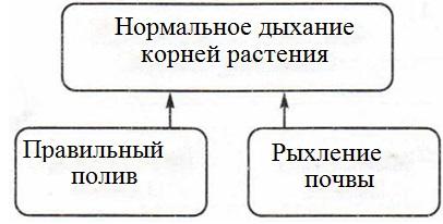 Какую связь отражает каждая схема 714